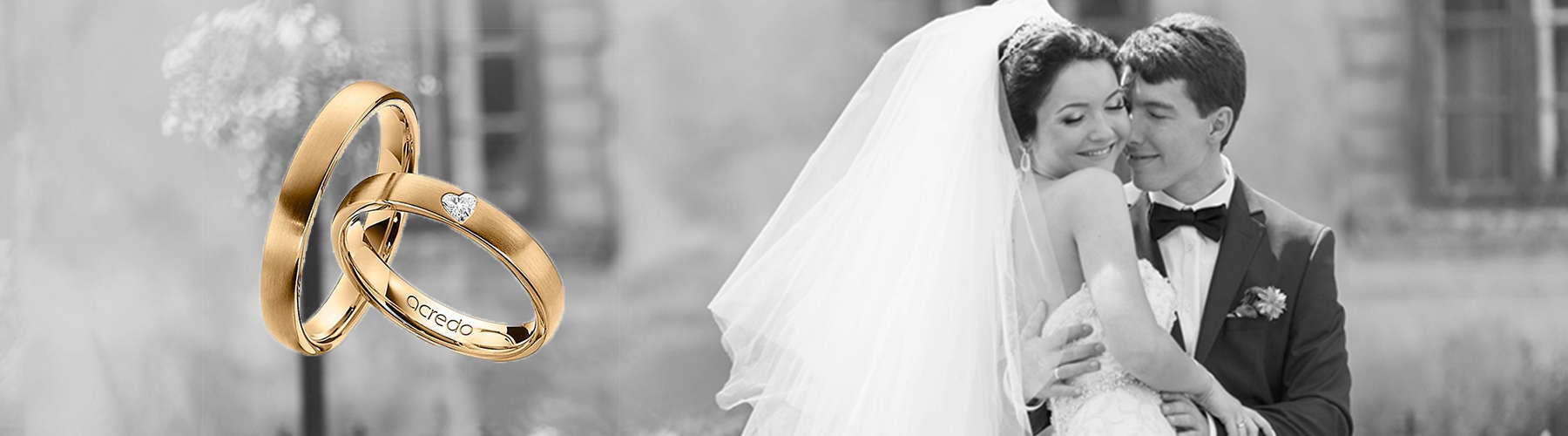 Alianzas de boda Classic